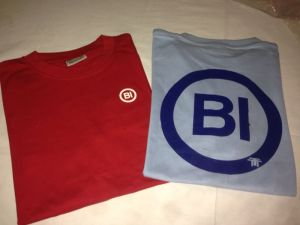 Camisetas Colección Matrículas antiguas BI de Llévame contigo by Triza 21